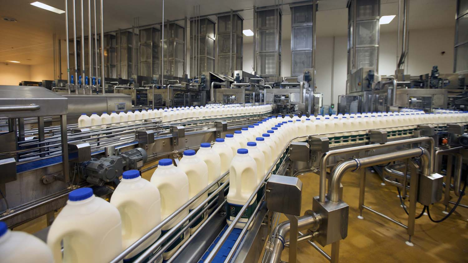 R&D Tax Credits for U.S. Dairy Production and Processing Companies