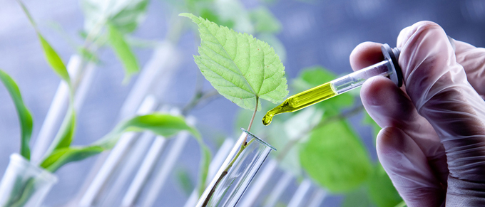 "The Biotechnology Industry is ""Growing"" and Can Qualify for Significant R&D Tax Credits"